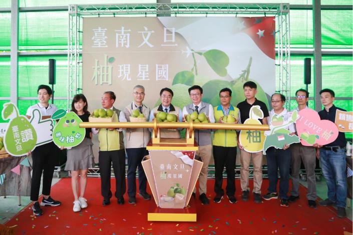 超搶手台南文旦 新加坡也能買得到 黃偉哲力推台南文旦外銷讓農友們賺好賺滿(共5張)-1
