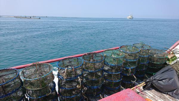 臺南市漁業資源巡護小組執行違規籠具漁具扣留