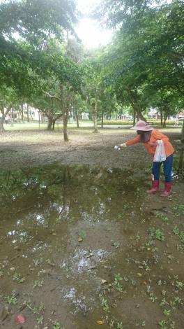 水萍塭綠地積水 工務局投藥、抽乾積水防治登革熱