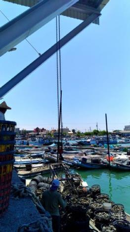 北門漁港吊蚵設施(二)