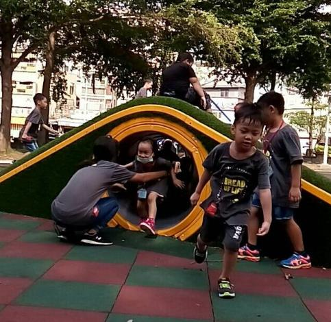 水萍塭公園-人造工樹洞
