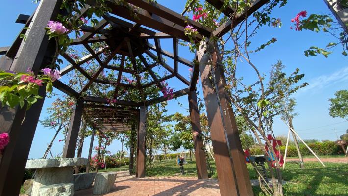 清淨家園考核12區獲獎 打造美綠家園(共6張)-1