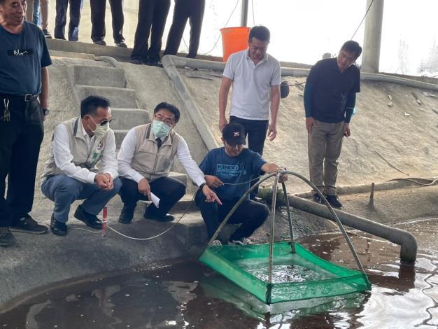 圖1 市長黃偉哲體驗白蝦採收