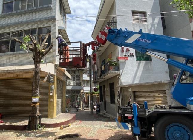 市府處置府中商圈風險樹木