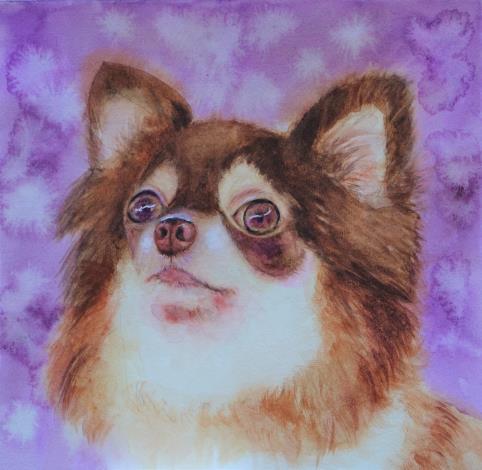 018-蘇品涵繪畫創作展-水彩作品-毛小孩動物系列