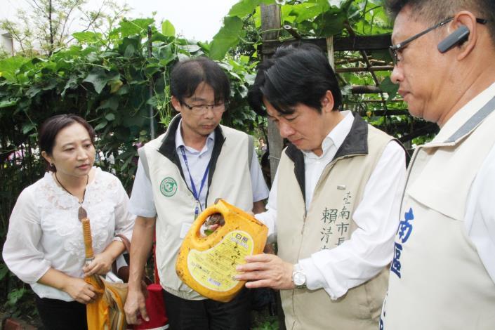 賴市長稽查國有地菜園發現陽性積水容器