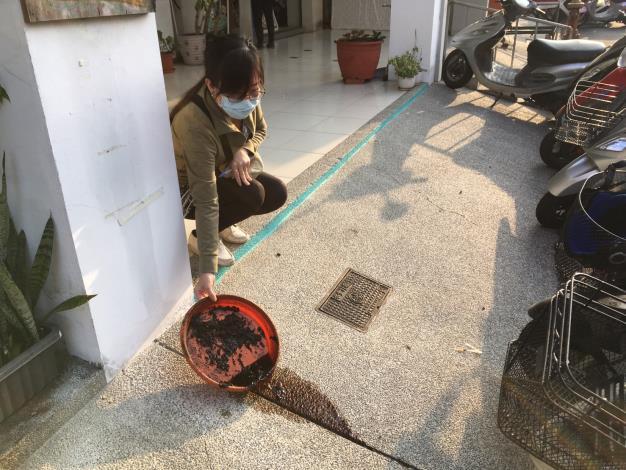 清除居家環境室內外積水容器2