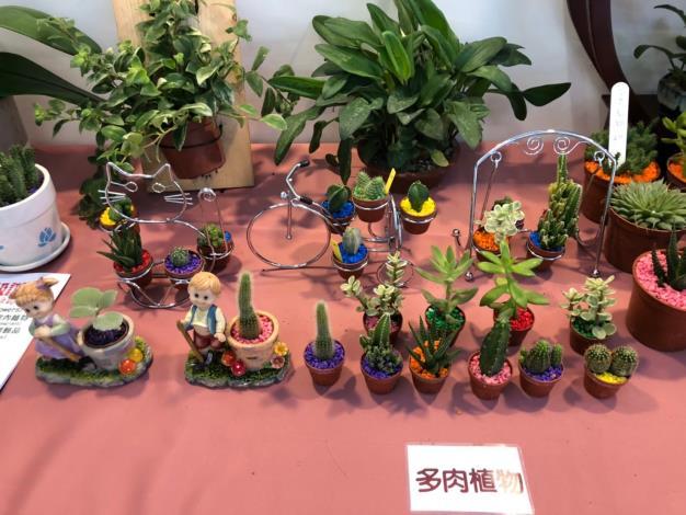 110年歸仁釋迦及七甲花卉展售會活動照片9