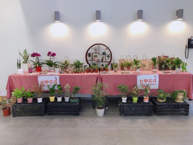 110年歸仁釋迦及七甲花卉展售會活動照片10