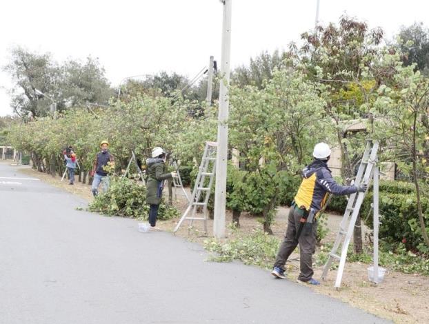 110年度臺南市景觀樹木修剪教育訓練暨認證考試