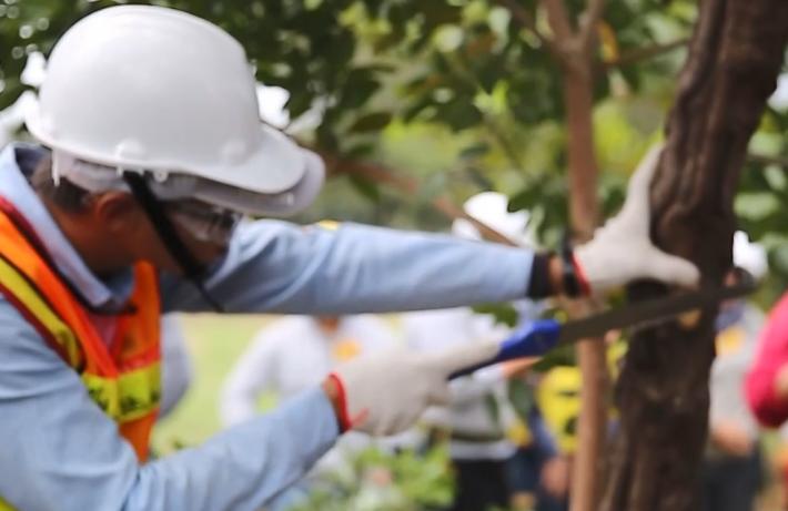 110年度景觀設木修剪教育訓練暨認證考試