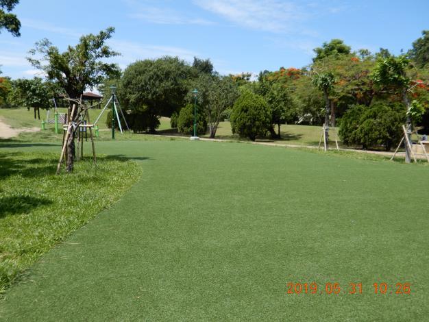 明和公園整修工程-綠色草皮