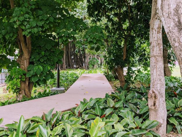 長興公園內步道