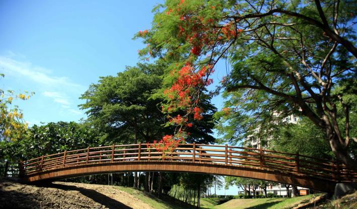 抬高木棧道