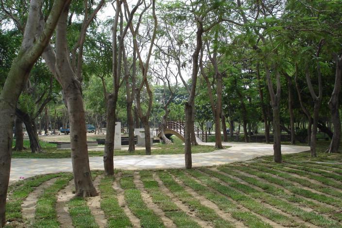 巴克禮紀念公園-草皮完工