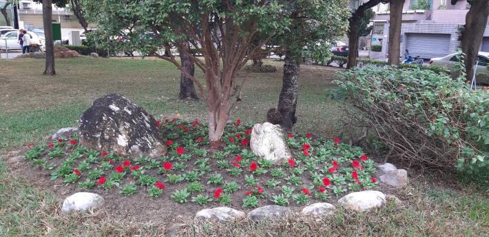 花鄉公園樹花擺設