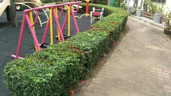 再興里三號公園綠籬