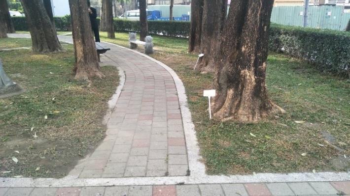 大成公園另側步道