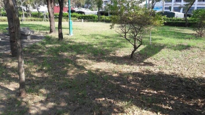 喜樹生活公園綠地