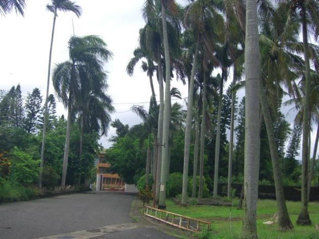玉井糖廠1