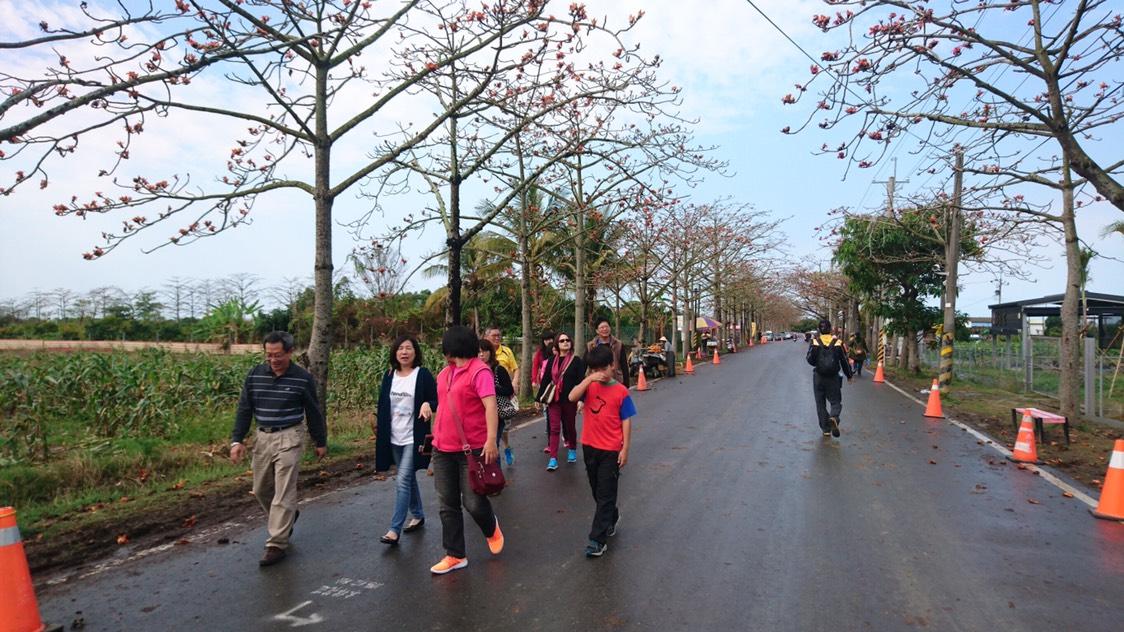 雨勢停歇後民眾把握時間前來賞花
