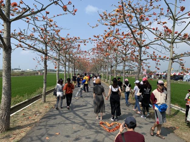 民眾在木棉道上賞花拍照