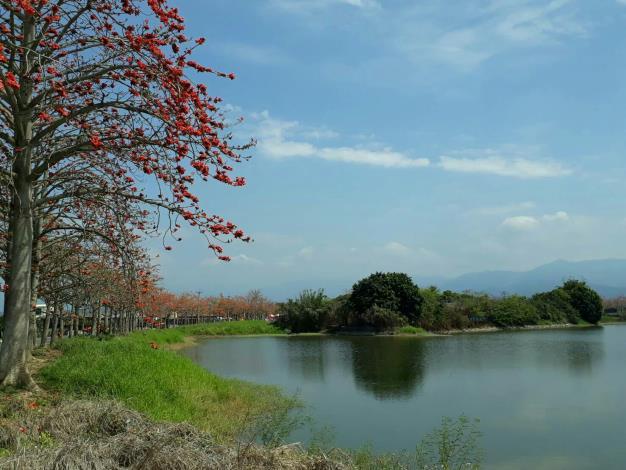 林初埤風景
