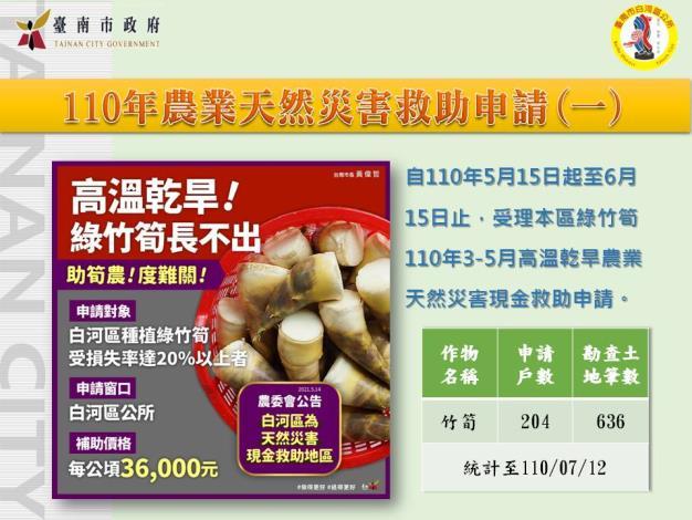 0713-110年農業天然災害救助申請(一)綠竹筍
