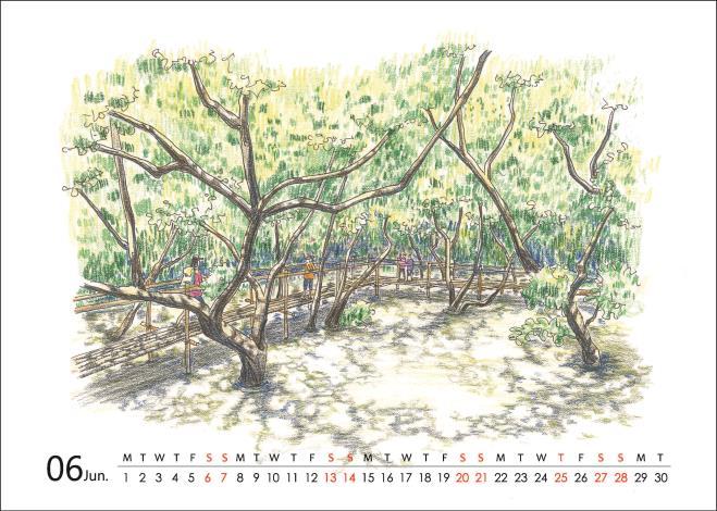 2020桌曆-台南濕地印象(全)_頁面_12