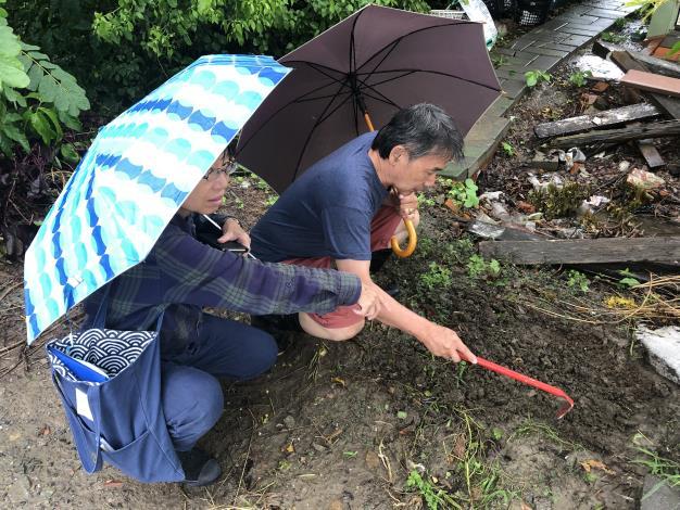 臺南市政府農業局陪同農民至現場察看螞蟻為害情形