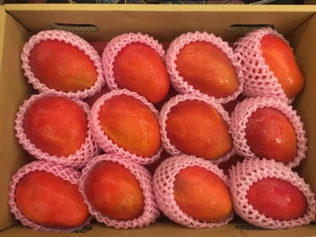0523精選優質農產品媒合會_210605