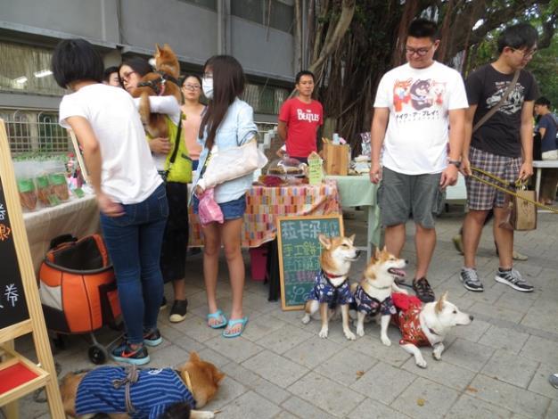 寵物食品攤位獲得許多狗狗主人的青睞