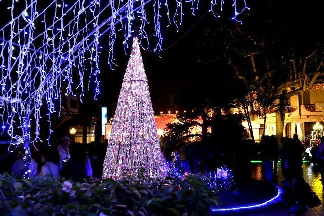 市長官邸耶誕樹燈飾