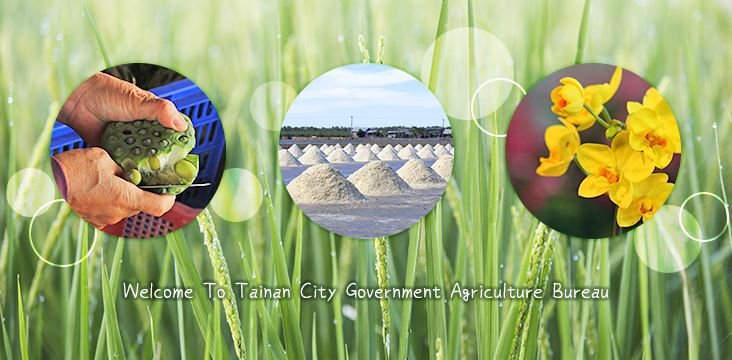 Tainan City Government Agriculture Bureau