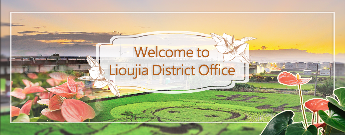 Welcome to Lioujia District Office