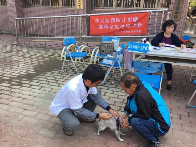 圖1  動保處獸醫同仁於七股區替犬隻進行狂犬病疫苗注射照片