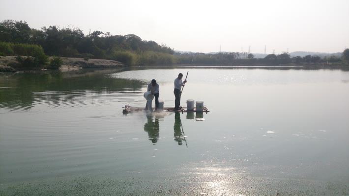 圖3、連日大雨過後,動保處呼籲水產養殖戶應做好魚塭消毒以避免魚蝦疫病發生。