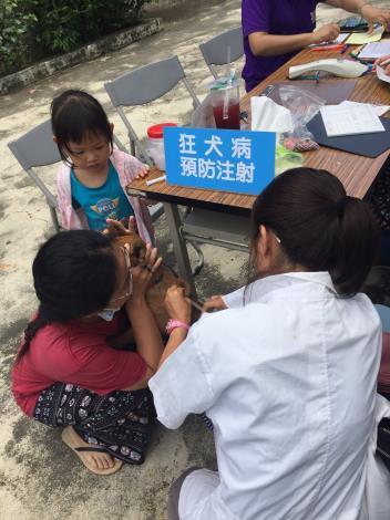 圖三、動保處於新化區舉辦狂犬病巡迴注射活動,小女孩陪媽媽一起帶狗狗前往注射,完成家中毛小孩年度施打狂犬病疫苗行程。
