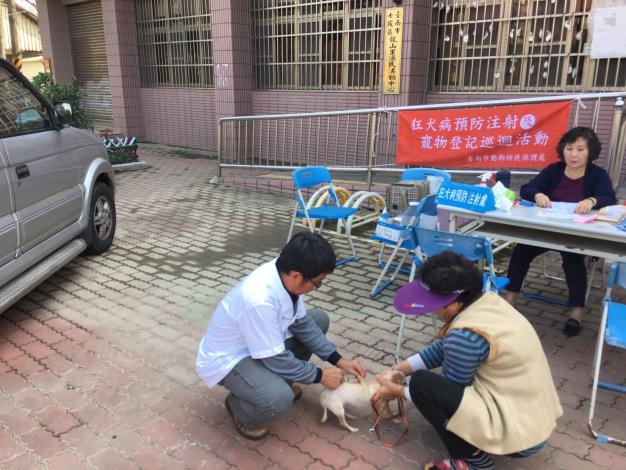 圖一、動保處於七股區舉辦狂犬病巡迴注射活動,民眾帶愛犬前往注射。