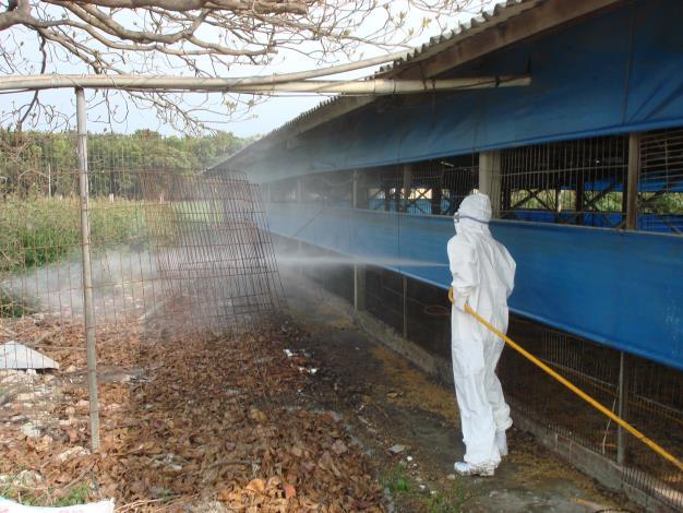 圖四、動保處消毒人員協助養禽場環境消毒,防範坦布蘇病毒等疫病