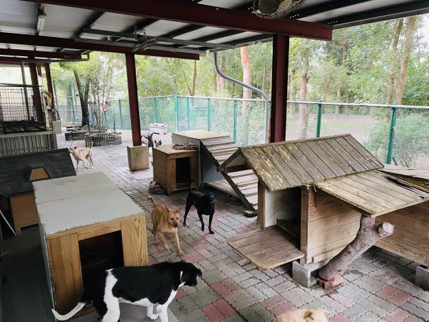 圖三、訪視本市民間狗場以掌握犬隻實際飼養情形良好