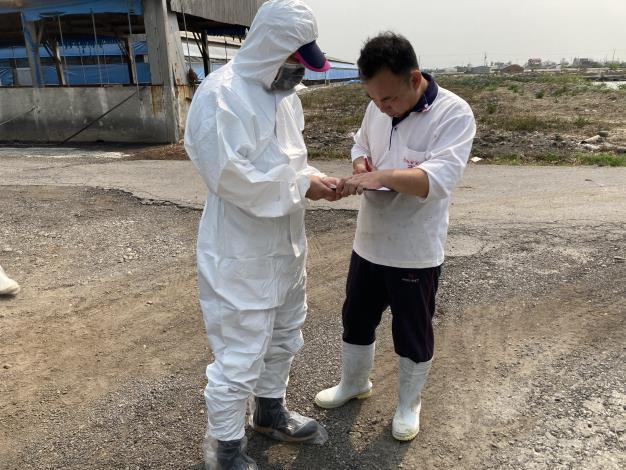 圖二、動保處進行養豬場疫情訪視,養豬場皆無異常情況