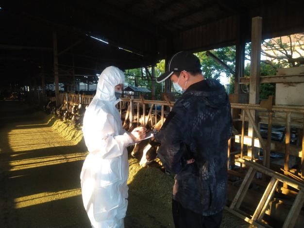 圖一、動保處全面訪查本市牛隻健康情形