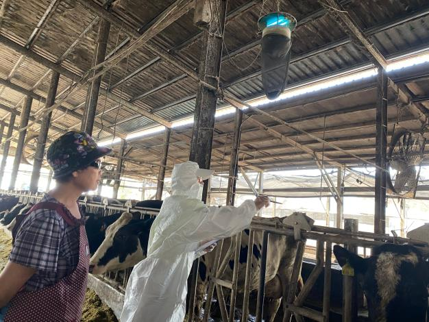 圖四、動保處輔導業者24小時開啟捕蚊燈,加強滅蚊