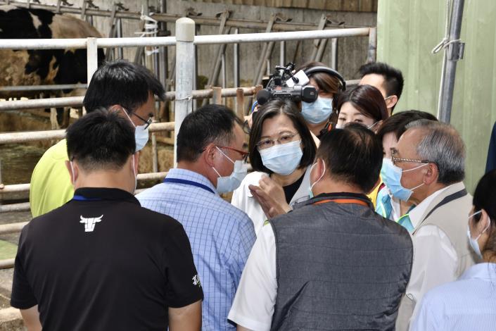 圖四、總統於養牛場外圍視察本市牛結節疹防疫情形