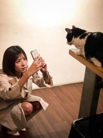 圖一、肥貓咖啡店內消費者與貓咪互動照片。