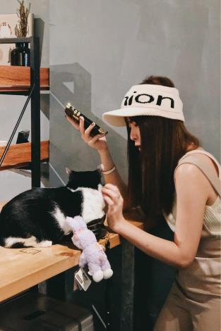 圖三、肥貓咖啡店內消費者與貓咪互動照片。