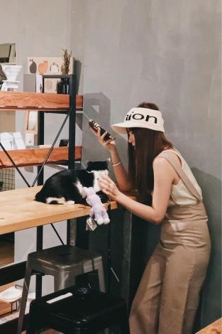 圖二、肥貓咖啡店內消費者與貓咪互動照片。