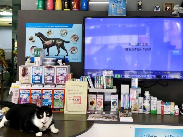圖片4. 領有許可證的業者才可以販售動物用藥品,並應實體陳列販售