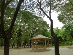 新化區體育公園